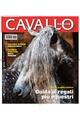 Cavalllo
