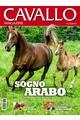 Cavallo Mag